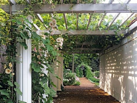 Garden Arch Cape Town Traditional Uses For Arches And Pergolas Hgtv