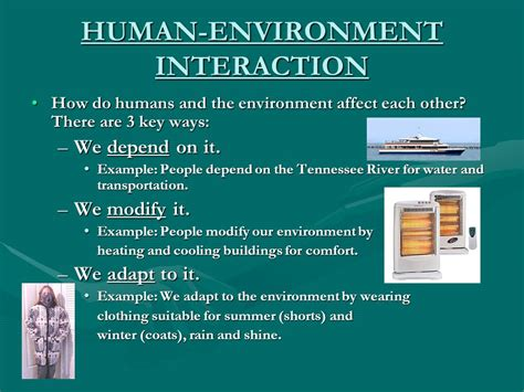 themes of geography human environment interaction the five themes of geography ppt video online download