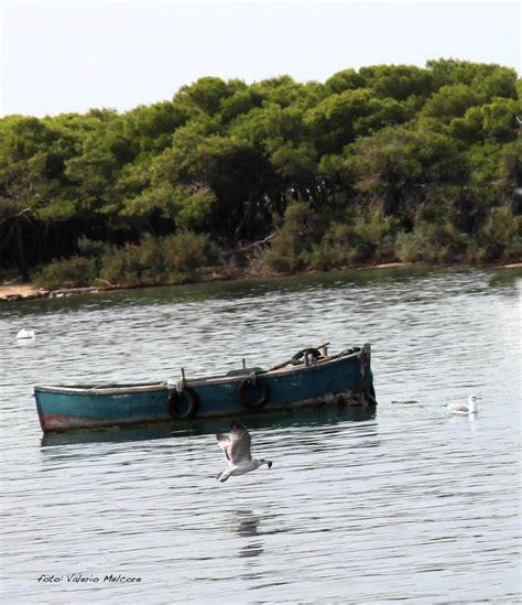 cronaca di porto cesareo controlli sui pescatori di porto cesareo leccecronaca it