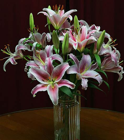 Vase Of Lilies by Lilies In A Vase Flickr Photo