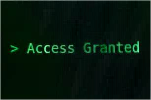 Access granted hacked