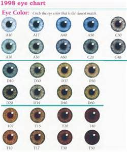 genetic eye color 17 best ideas about eye color charts on