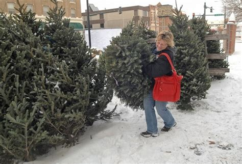 christmas tree sales begin in bis man local news for