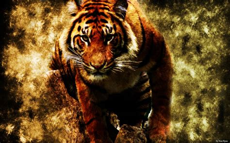 tiger print full hd wallpaper and background image cool tiger backgrounds wallpaper cave