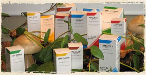 Pekana Detox And Drainage Kit by Biotherapeutic Drainage Medicine Pekana Additional