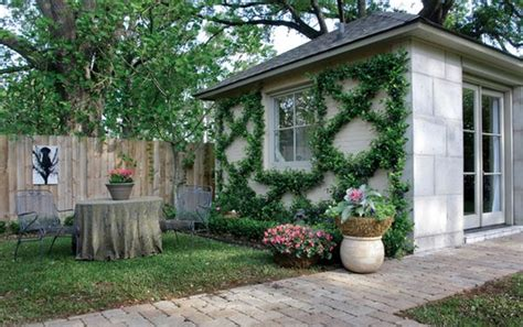backyard vines vine covered walls let you enjoy the outdoors for the best