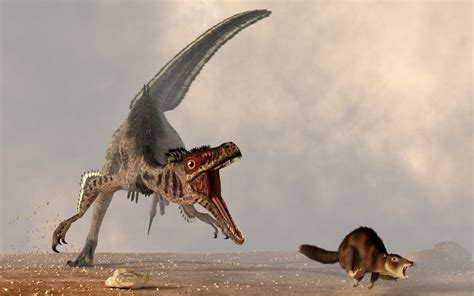 what does velociraptor eat it velociraptor chasing small mammal by deskridge on deviantart
