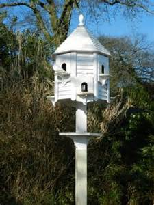 dove house on pinterest house and women s