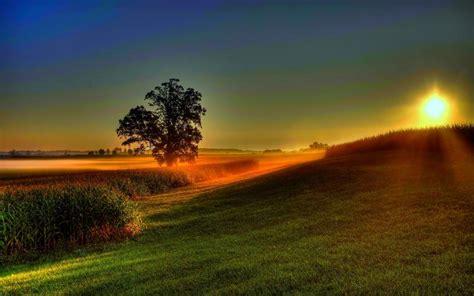 hd   dawn awaits wallpaper
