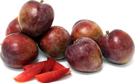 elephant heart plums information recipes and facts