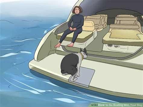 boat dog steps how to go boating with your dog 15 steps with pictures