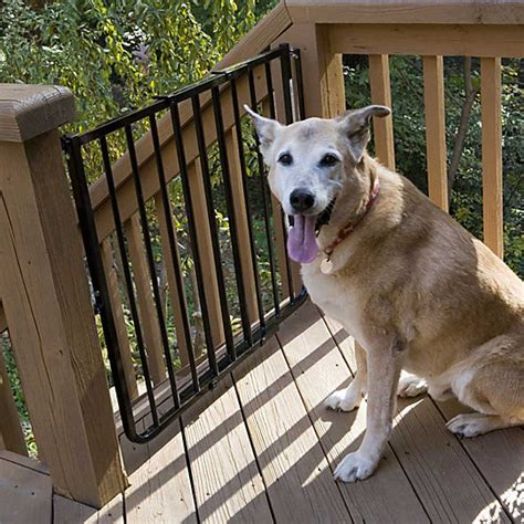 porch gate for dogs how to choose a gate improvements