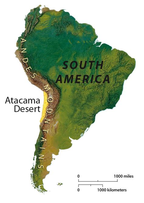 atacama desert map photo gallery prehistoric penguins found
