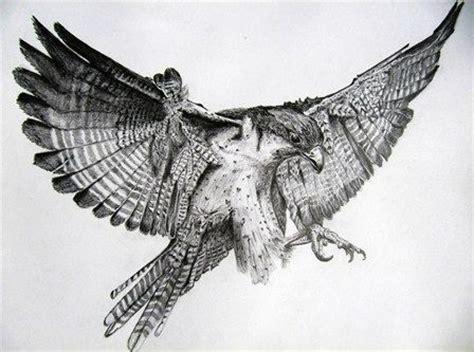 mantide religiosa porta fortuna 25 best ideas about falcon on hawk