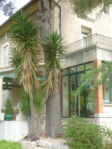 montpellier chambre d hote lavagance chambre d h 244 te 224 montpellier herault 34