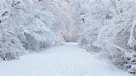 picture of snow psicolog 237 a color blanco negro y gris