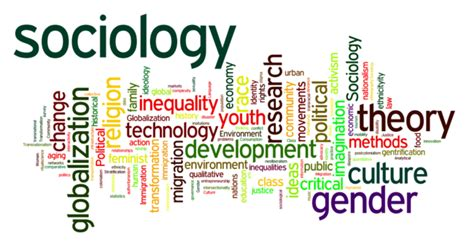 Sosiologi The Key Concepts Oleh introduction to sociology mr s sociology
