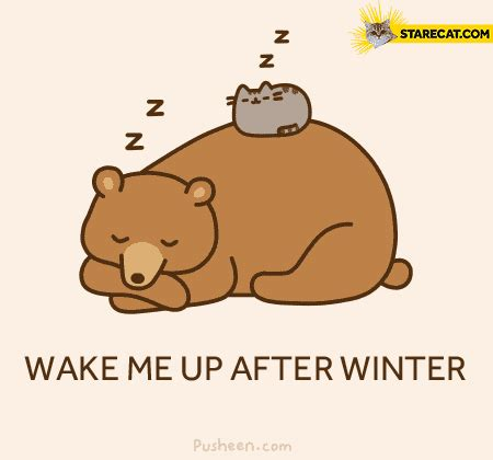 wake me up after winter pusheen starecat com