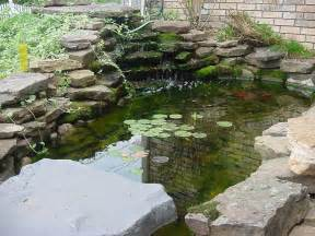 Koi fish pond design ideas koi fish pond design ideas for backyard
