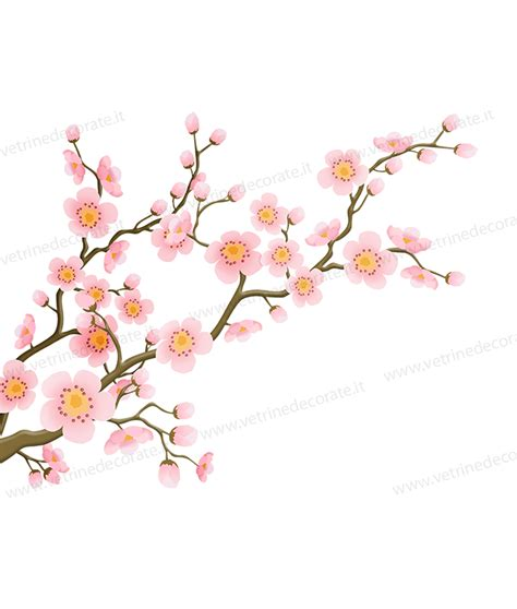 rami e fiori rami fioriti con boccioli e fiori rosa