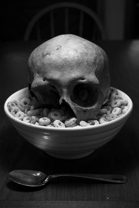 Cereal Killer White 155 best images about artist yoko tanji on