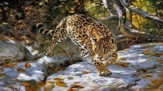 Wallpapers Of Jaguar 23 The Jaguar Spotted Cat Wold Big Animals Hd Wallpaper