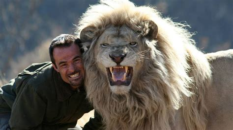 youtube film lion man lion man kevin richardson south africa youtube