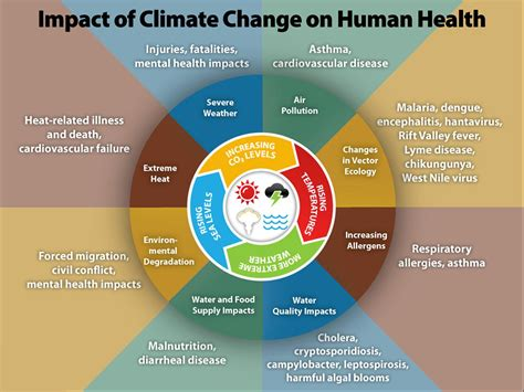 the human in health and illness e book books before the flood fact climate change is