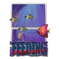 feeding frenzy game use the mouse to control your fish