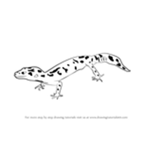 collared lizard coloring page learn how to draw a collared lizard reptiles step by