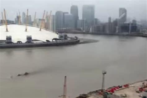 sungai thames di london muncul sosok misterius di sungai thames bukti dinosaurus
