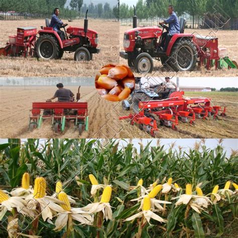 Best Corn Planter by 3 Row Corn Planter With Best Quality View 3 Row Corn Planter With Best Quality Nmb Product