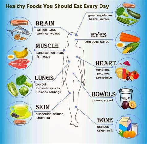 eat healthy fats everyday how much should dogs eat increase of what foods
