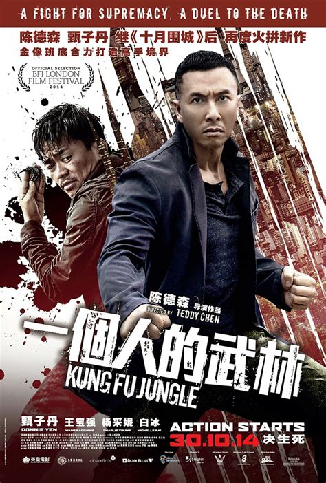 kung fu jungle 2015 martial arts entertainment kungfu jungle 一个人的武林 movie review tiffanyyong com