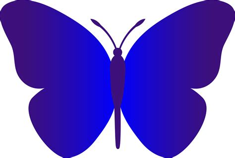 free butterfly clipart free butterfly clip graphics clipart panda free