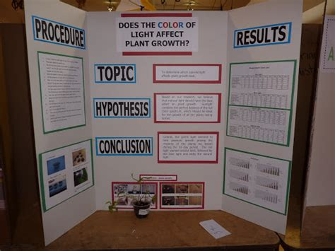 Does The Color Of Light Affect Plant Growth 28 Images
