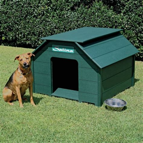 funny dog houses 20 beautiful and funny dog house plans for your inspiration