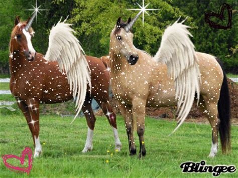 imagenes de unicornios para colorear unic 243 rnios alados vers 227 o melhorada picture 132746352
