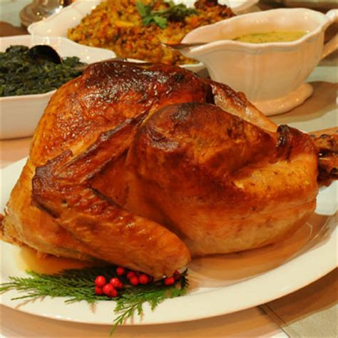 thanksgiving turkey marinade recipe best thanksgiving recipes and meal ideas