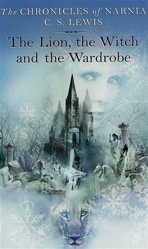 Witch Wardrobe by Top 100 Children S Novels 5 The The Witch And The
