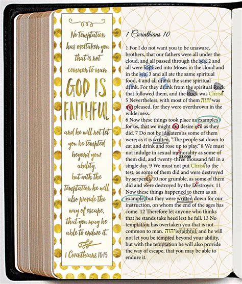 delights and disciplines of bible study a guidebook for studying god s word books bible journaling with photoshop brushes biblejournallove