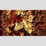 Half Lion Half Tiger Art | 2560 x 1440 jpeg 273kB