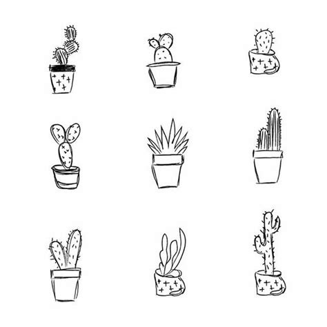 cactus doodle my science books are literally covered with doodle like
