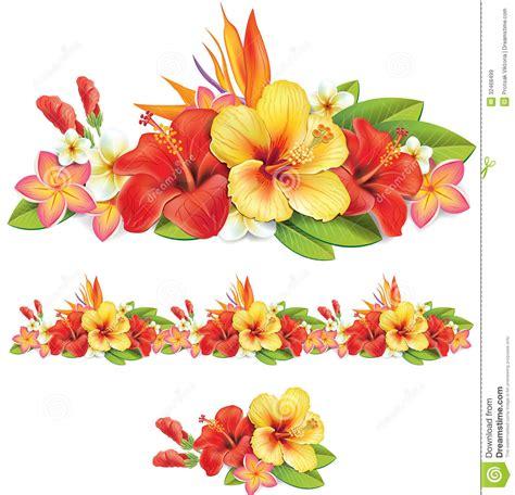 imagenes de flores libres guirnalda de flores tropicales im 225 genes de archivo libres