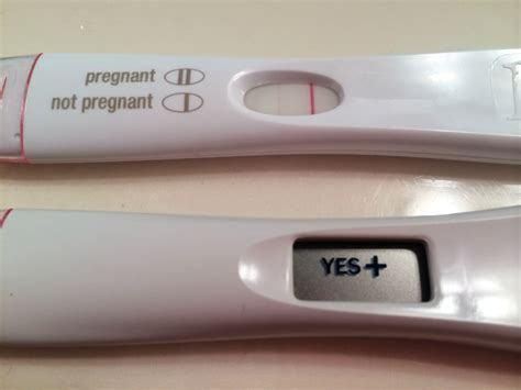 pug gestation period what does a positive pregnancy test really look like page 7 the bump