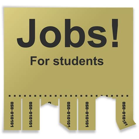 themes for college students summer job options and ideas for college students