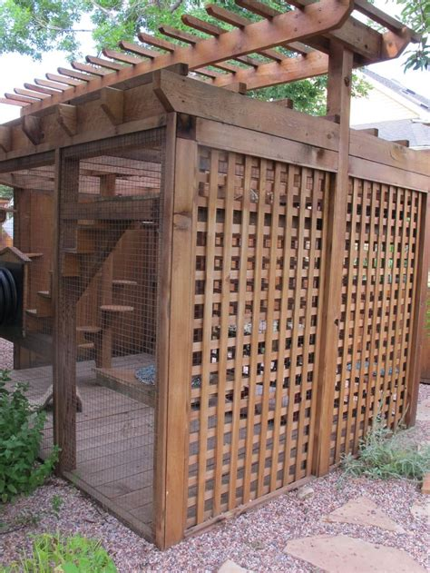 backyard cat enclosure outdoor cat tunnel google search cat enclosure