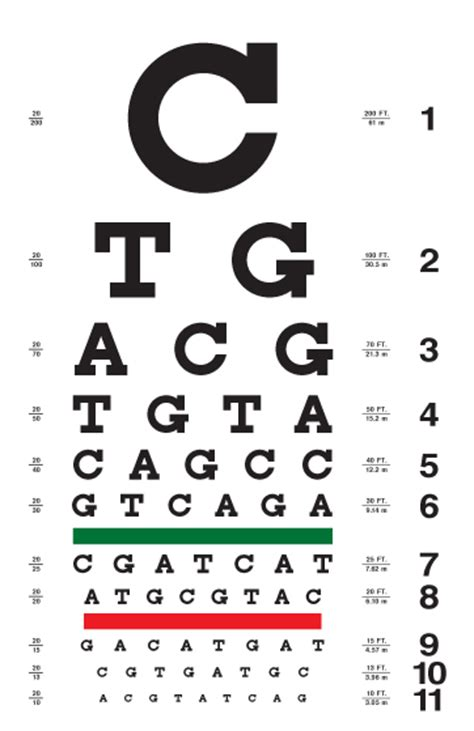 printable eye chart with instructions sle tumbling e chart male models picture