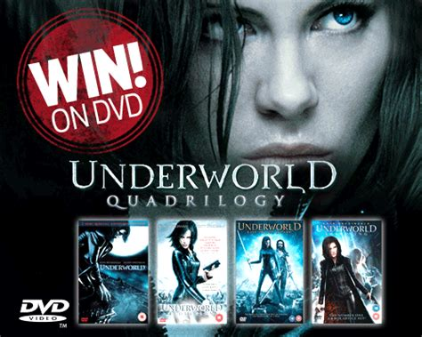 film underworld 1 motarjam win underworld quadrilogy box set on dvd movie talk