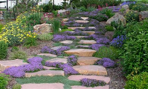 small hillside landscaping ideas on budget motorcycle review and galleries